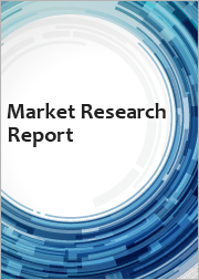 IT Services Market in Latin America 2015-2019