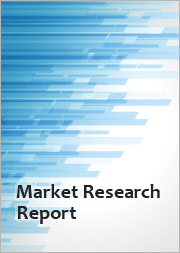 Analysis of the Latin American Information Technology (IT) Infrastructure Outsourcing Services Market
