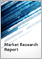 Automotive Interiors Material - Global Market Outlook (2017-2026)
