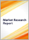 Automotive Snow Chain - Global Market Outlook (2017-2023)